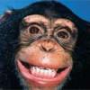 Изображение Стоматологический вестерн, или выгодно ли лечить зубы за рубежом?